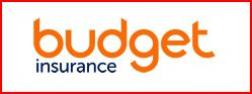 budget insurance group logo