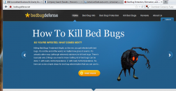 Bed Bug Defense logo